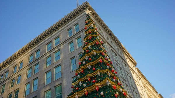 Highmark Unity Tree in Pittsburgh