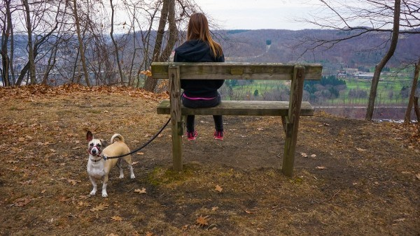 Rachel Carson Trail in Harrison Hills Park