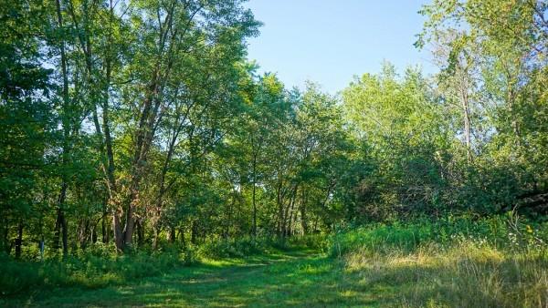 Trails at Riverview Park