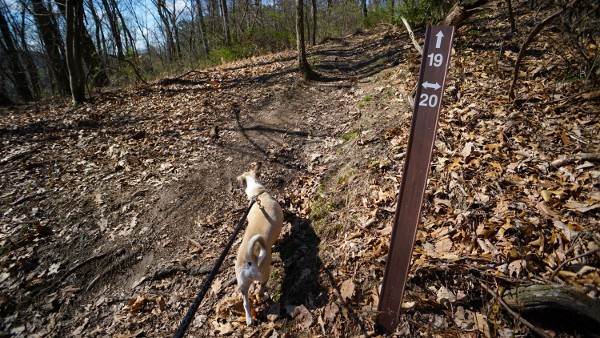 Hiking Signs at Hartwood Acres
