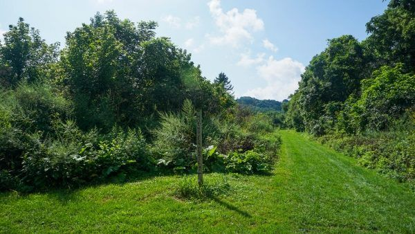 Thornburg Conservation Area