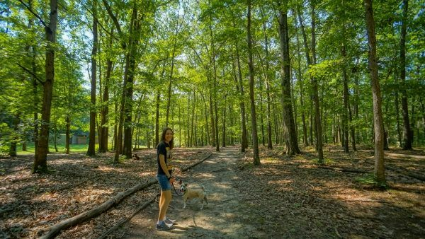 Hiking at Deer Lakes Park