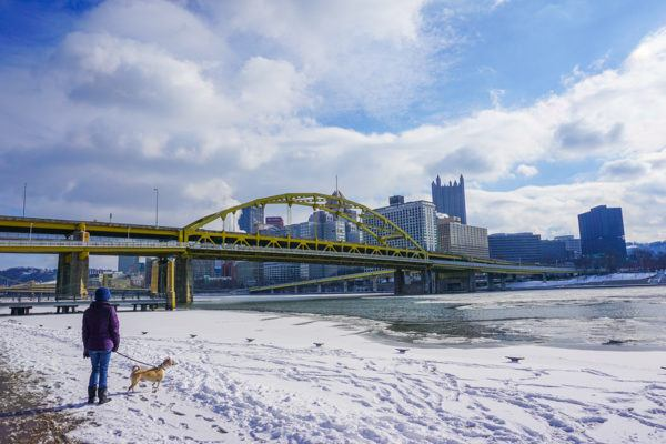Frozen Allegheny River at the Fort Duquesne Bridge