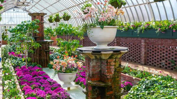 Phipps Conservatory Spring Flower Show