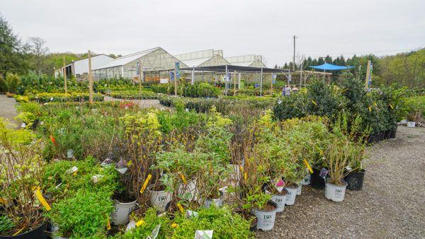 Bedner's Farm
