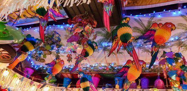 Parrots at Bob's Garage