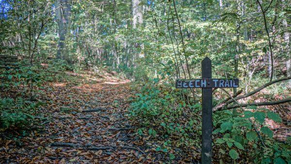 Hiking at Robin Hill Park