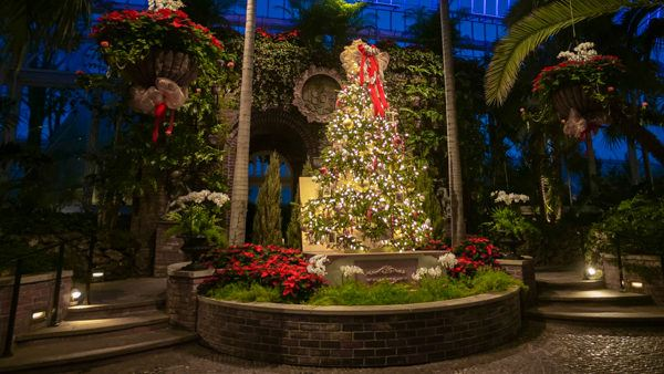 Christmas at Phipps Conservatory