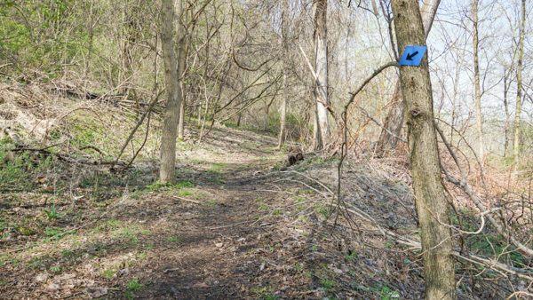Barking Road Trail