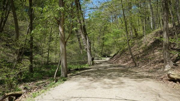 Frick Park Trails