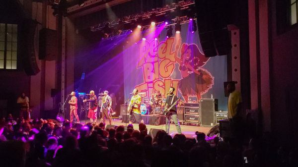 Reel Big Fish at the Roxian Theatre