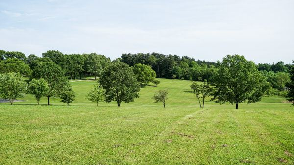 Bushy Run Battlefield site