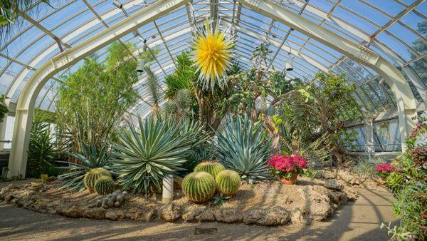 Phipps Conservatory's Desert Room