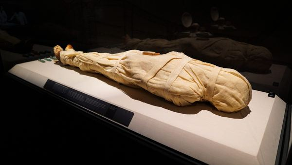 Human Mummy Embalmed in the 1990s
