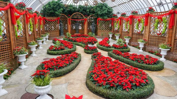 The Broderie Room at Phipps