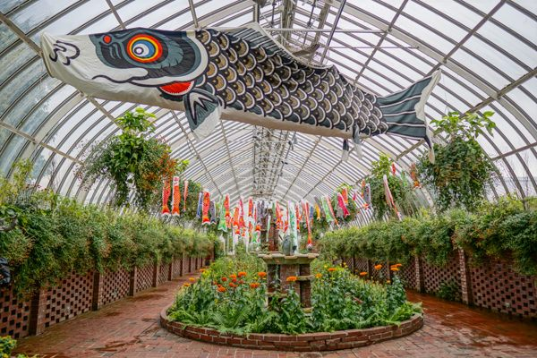 Phipps Conservatory During Fall Flower Show