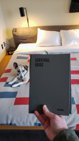 Survival Guide at the Ace Hotel