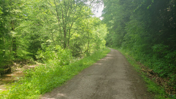 Average Path Photo for the Butler-Freeport Trail