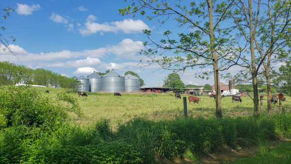 Farmland in Butler off the Butler Freeport Trail
