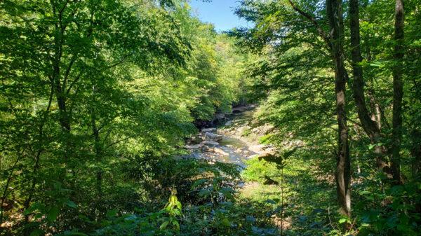 River Views near Nanty Glo
