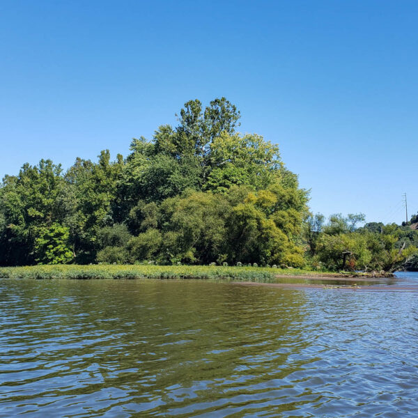 Sycamore Island from the Water