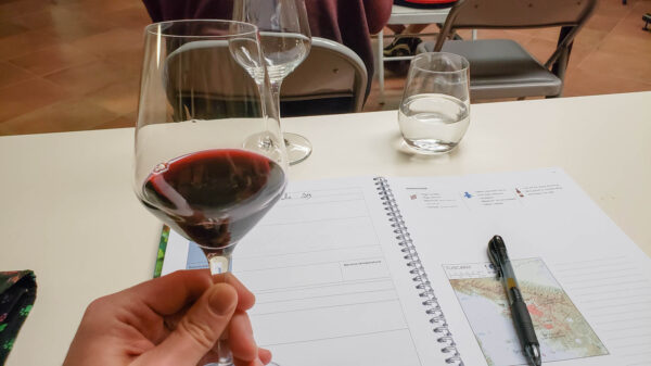Wine from WSET Level 2