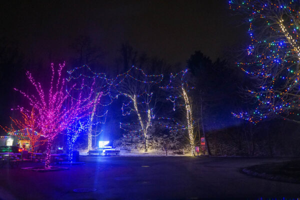 Holiday Lights at the Pittsburgh Zoo