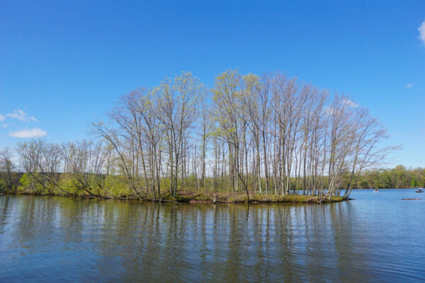 Snake Island at Moraine State Park