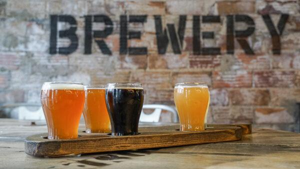 Beer Flight at 412 Brewery