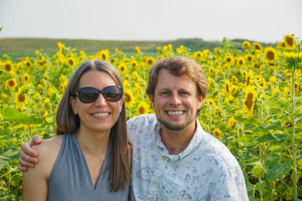 Renshaw Farms Sunflowers