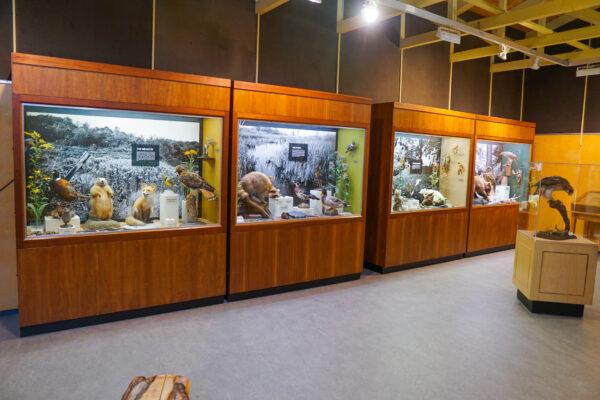Exhibits at Powder Mill Nature Reserve