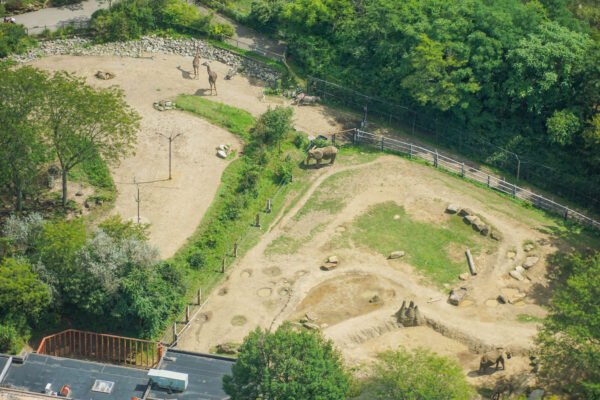 Pittsburgh Zoo from a Helicopter