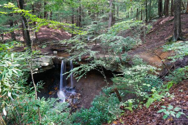 Adams Falls at Linn Run State Park